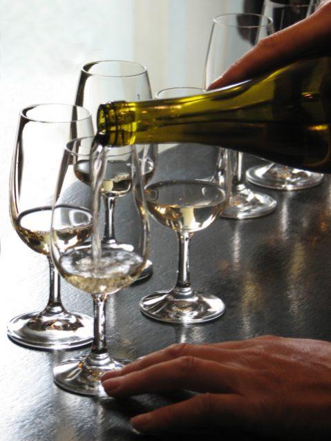 reportage sur la vigne, le vin et la dégustation