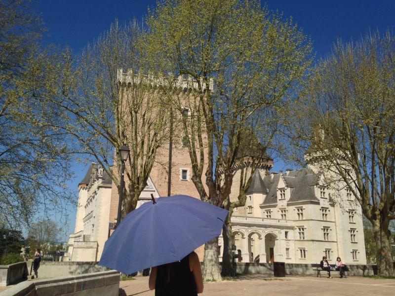 Parapluie de Berger 06 ©CDT64-E.Roy
